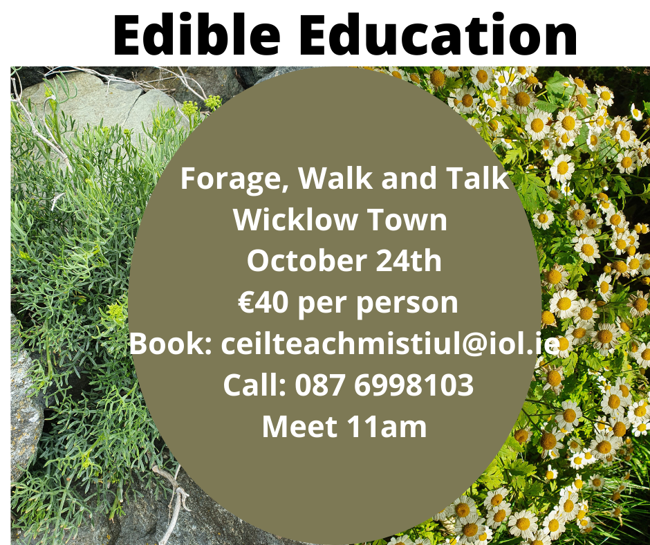 Edible Education is taking part in Wicklow Naturally's October Feast