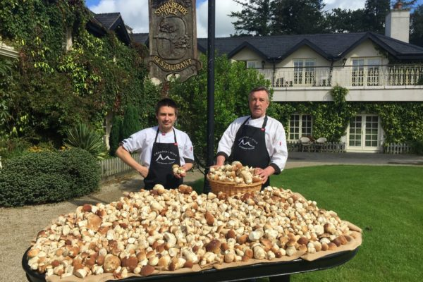 The Wicklow Harvest Dinner Menu at The Strawberry Tree Restaurant