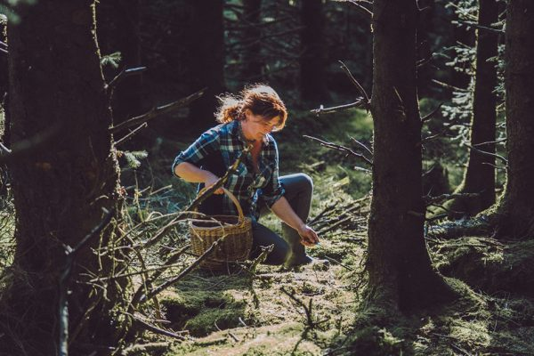SOLD OUT – A foraging tour of the forest